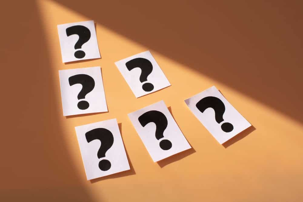 Answers to the SEO questions you were too afraid to ask!